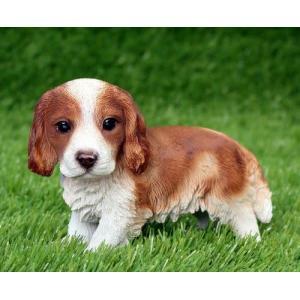 アニマルオブジェ:キャバリア A犬 置物 インテリア 動物 オブジェ 子犬|happy-goods