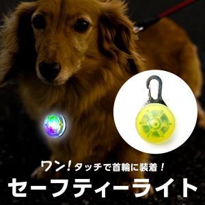 セーフティーライト ペット用 犬 首輪 ライト 散歩 お散歩 夜間 ライト クリップ キーホルダー 光る カラビナ LED
