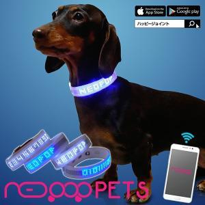 光る首輪 NEOPOP 犬用 ベルトタイプ 2サイズ LED 軽量 安全ライト 迷子札 首輪 調節可能 電池交換 散歩 夜間 ペット 用品 ネオポップ 文字表示|happy-joint