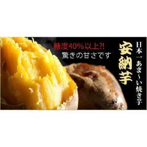 母の日 ギフト 種子島で一番美味しい 安納芋 石焼き芋500g 景品 2017 和菓子 お取り寄せ|happy-ohgon
