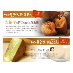 母の日 ギフト 送料無料 19+1個お好きな味を選べます 安納芋の高級薄皮 大判焼き 景品 2017 和菓子 お取り寄せ おやき お返し|happy-ohgon|04