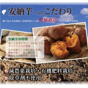 安納芋のたい焼き 粒あん【黄金あん入り】|happy-ohgon|04