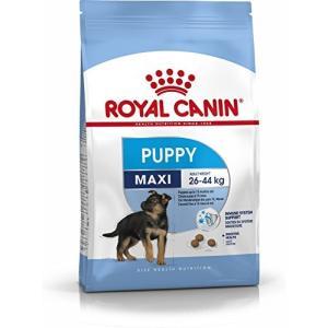 ロイヤルカナン SHN マキシ ジュニア 犬用 4kg|happy-square