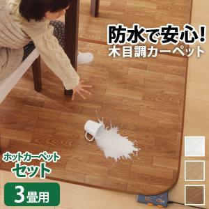 ホットカーペット カバー 3畳 セット 木目 長方形 省エネ 2点セット(カバー+本体)〔ウッディ〕|happyconnect