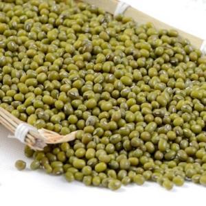 緑豆 約980g入り