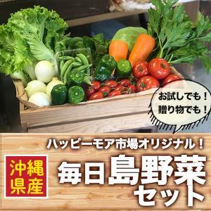 毎日島野菜セット【ハッピーモア市場オリジナル!】※1-2名様用(全国送料無料)