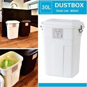 ダストボックス おしゃれ 屋内・屋外 キッチン ゴミ箱 30L ホワイト|happyrepo
