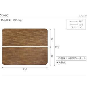 ホットカーペットカバー 防水 3畳用(250×198) 木目調ホットカーペット・カバー おしゃれ happyrepo 07