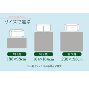 ホットカーペットカバー1畳用(188×98) ホットカーペット本体セット 2点セット ふかふか極厚ラグ 厚手 happyrepo 11