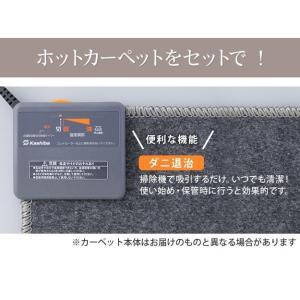 ホットカーペットカバー1畳用(188×98) ホットカーペット本体セット 2点セット ふかふか極厚ラグ 厚手 happyrepo 09