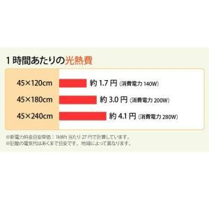 キッチン用ホットカーペット 本体+ホットカーペットカバー 45×120cm 木目調ホットキッチンマット 日本製 happyrepo 09