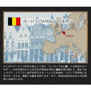 廊下敷き ベルギー製ウィルトン織 80×240 Cartello happyrepo 08