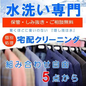 宅配 クリーニング 保管 水洗い しみ抜き 無料 組み合わせ自由5点〜 hapyy-singu