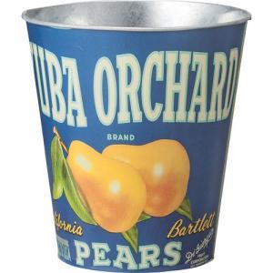 完成品 ゴミ箱 スチール かわいい おしゃれ フルーツ缶 デザイン 雑貨 小物入れ 雑貨入れ インテリア 生活雑貨 ごみ箱 ダストボックス くずかご くずカゴ 可愛い|harda-kagu