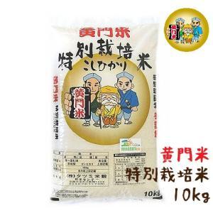 米 10kg 特別栽培米 コシヒカリ 茨城県産 黄門米|harika-gift