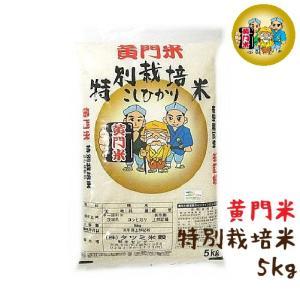 米 5kg 特別栽培米 コシヒカリ 茨城県産 黄門米 白米|harika-gift