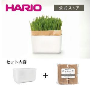 ハリオ(HARIO)猫草栽培キット にゃんベジセット/PTS-NKCN-2P|hariopartscenter