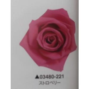 【プリザーブドフラワー】ローズ・いずみ9輪ストロベリー|hariyakougei21