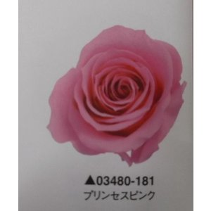 【プリザーブドフラワー】ローズ・いずみ9輪プリンセスピンク|hariyakougei21