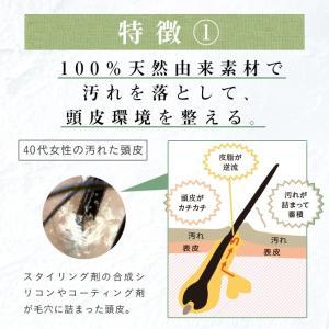 シャンプー haru 100%天然由来の「kurokamiスカルプ」。ノンシリコン&リンス・コンディショナー不要。ハリ・コシUP(400ml 約2ヶ月分)|haru-shop|05