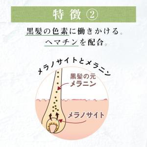 シャンプー haru 100%天然由来の「kurokamiスカルプ」。ノンシリコン&リンス・コンディショナー不要。ハリ・コシUP(400ml 約2ヶ月分)|haru-shop|06