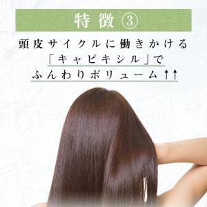 シャンプー haru 100%天然由来の「kurokamiスカルプ 3本セット(25%OFF) 」。ノンシリコン&リンス・コンディショナー不要。1本あたり一番お得|haru-shop|07