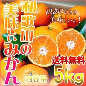 みかん 5kg 和歌山県産 訳あり・ご家庭用 送料無料(北海...