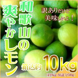 レモン 10kg(箱込約10kg 9kg+保証分500g) 国産 訳あり・ご家庭用 送料無料(東北・...