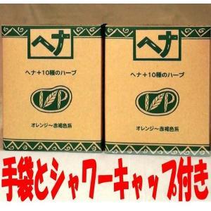 ナイアード ヘナ+10種のハーブ 100g 2個セット [手袋とシャワーキャップ付き]|haruyakuten