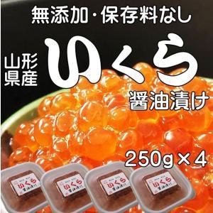 いくら 醤油漬け 1kg (250g×4)送料無料 山形県産...