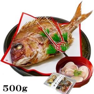 お食い初め 鯛 ハマグリ セット 500g 送料無料 祝鯛 敷き紙 鯛飾り 祝い箸 焼き鯛 料理 はまぐり 天然 真鯛|hasegawasengyo