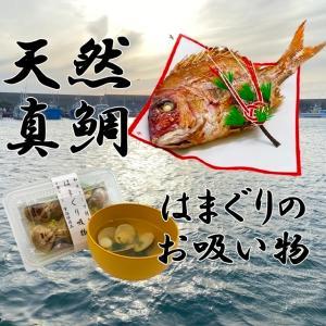 お食い初め 鯛 ハマグリ セット 500g 送料無料 祝鯛 敷き紙 鯛飾り 祝い箸 焼き鯛 料理 はまぐり 天然 真鯛|hasegawasengyo|02