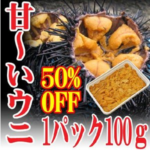 業務用チリ産 ウニ 100g冷凍 ムラサキウニ うに丼約2杯分 海鮮丼 鮮魚 冷凍食品|hasegawasengyo