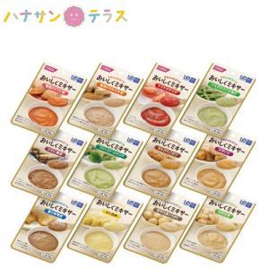 介護食 おいしくミキサー バラエティセット 12種×1P ホリカフーズ 日本製 レトルト 介護用品