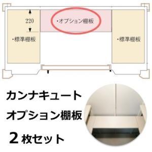 物置 オプション キュートオプション棚板セット 2枚組|hashibasangyo