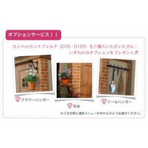 おしゃれ デザイン 物置・カンナフォルテD125石目調 送料無料|hashibasangyo|06
