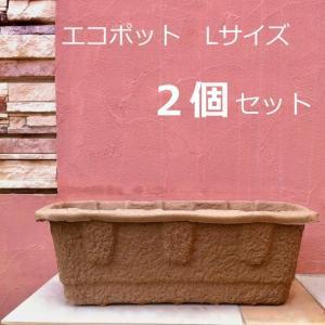 環境にやさしい プレミアムエコポット2個セット|hashibasangyo