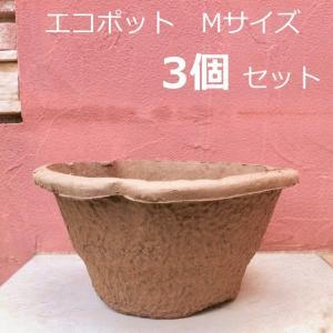 環境にやさしい プレミアムエコポット3個セット|hashibasangyo