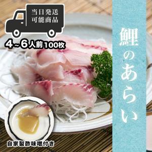 鯉のあらい 自家製酢味噌付き 5人前〜 たっぷり切り身100枚以上! コイ洗い 刺身 大容量 生食用  13時まで当日出荷