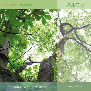 涼感 ヒーリング CD ハルニレ 知浦伸司 著作権フリー メール便送料無料 試聴OK