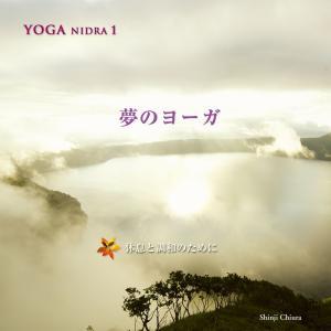 ヒーリング CD YOGA NIDRA 1 夢のヨーガ / 知浦伸司 著作権フリー メール便送料無料 試聴OK