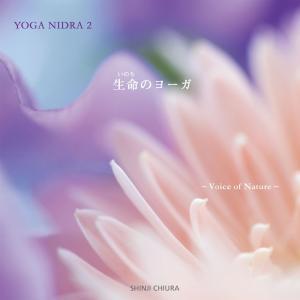 ヒーリング CD YOGA NIDRA 2 生命のヨーガ / 知浦伸司 著作権フリー メール便送料無料 試聴OK