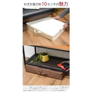 サイドファスナー収納ボックスLL ベット下 ソファ下用|hat-shop|02