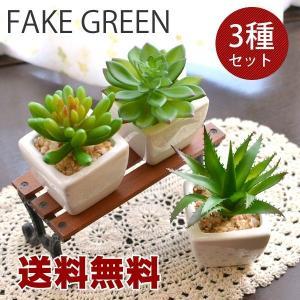 送料無料 観葉植物Lサイズ フェイクグリーン スクエア 3個セット|hat-shop