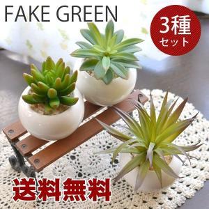 送料無料 観葉植物Lサイズ フェイクグリーン オーバル 3個セット|hat-shop