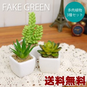 送料無料 多肉植物3個セット フェイクグリーン|hat-shop