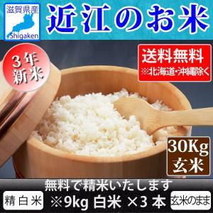 令和3年新米 近江のお米 滋賀県産10割 30kg玄米 精米無料 健康応援  近江米 送料無料 一部地域を除く 滋賀県ご当地モール|hatasyou-ten