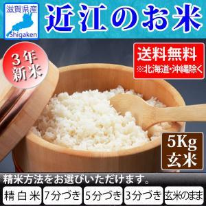 令和2年産 新米 近江のお米 滋賀県産10割 5kg玄米 お好きな分つきに 健康応援  近江米 送料無料 一部地域を除く hatasyou-ten