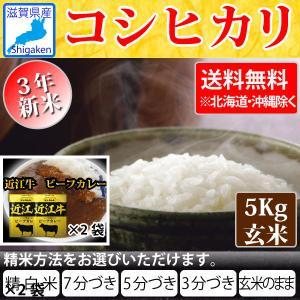近江牛カレー160g2袋付き 令和3年新米  滋賀県産コシヒカリ5Kg玄米 【精米方法が選べます】 お好きな分つきに 健康応援 送料無料※一部地域を除く|hatasyou-ten