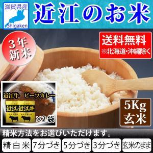 近江牛カレー160g2袋付き 令和3年新米 近江のお米 滋賀県産10割 5kg玄米 お好きな分つきに 健康応援  近江米 送料無料 一部地域を除く|hatasyou-ten